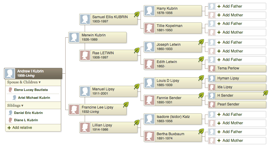 Kubrin-Lipsy family tree